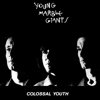 Young Marble Giants - Colossal Life