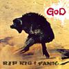 Rip Rig & Panic