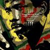 King Sunny Adé & His African Beats - Juju Music