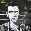 Peter Gabriel - Peter Gabriel 3 (Melt)