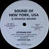 Spoonie Gee - Spoonin' Rap
