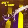 Bush Tetras - Too Many Creeps