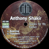 Anthony Shakir - Tracks For My Father